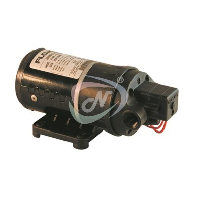 Duplex II DC Demand Pump